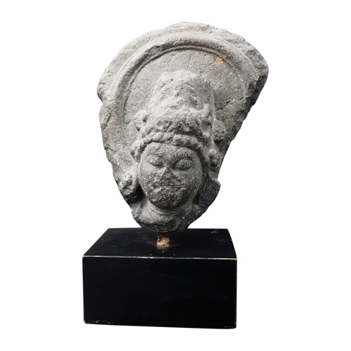 Steinkopf - Pala - X. Jahrhundert - Indien